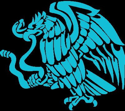 Mexico-Bird-4
